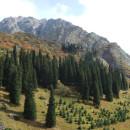 Ущелье Ала-Арча (Кыргызстан)