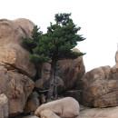Национальный парк Сароксан (Республика Корея)