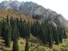Ущелье Ала-Арча (Горы Тянь-Шань)