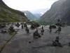 По пути из Осло в Беркак