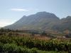Винодельческое хозяйство GRAFF