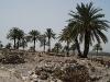 Национальный парк Мегиддо