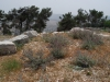 Самария, гора Гризим и окрестности