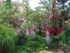 Заповедник и Национальный парк Эйн Геди