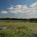 Озеро Карец