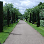 One of the Alleys in Regent's Park in London